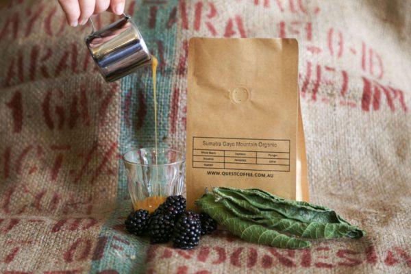 Sumatra Gayo Mountain Organic bean bag, caramel, blackberries, and tobacco